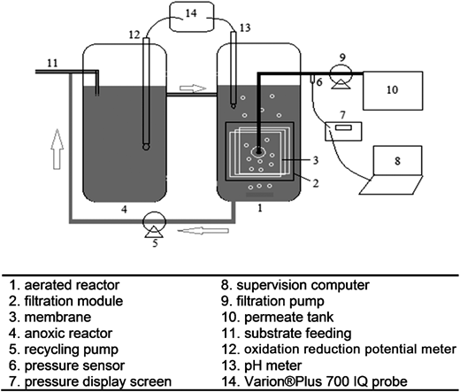 Schematic of laboratory-scale MBR system used in the study.