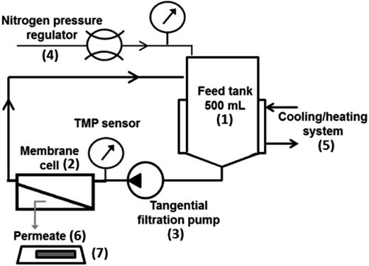 Illustration of the filtration experimental set-up.