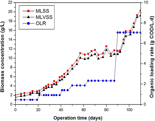 Biomass concentration and OLR variation with operation time.