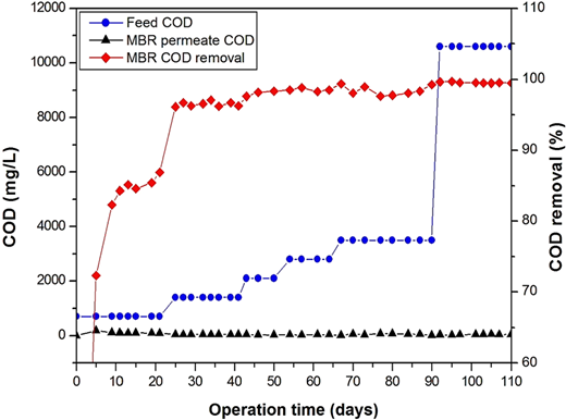 Influent and effluent COD and COD removal efficiency through the wastewater treatment phases.