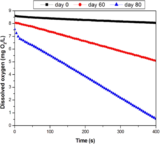 Biomass activity assessment with aerated tank's dissolved oxygen evolution.