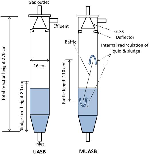 Schematic diagram of UASB and MUASB reactors.