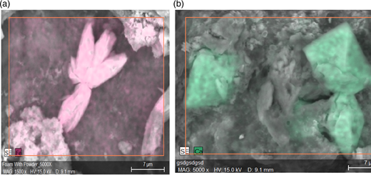 Close-up views from Figure 6 of SEM-EDS element maps showing Fe-P in vivianite (a) and calcium in weddellite (b) as identified by XRD scans in Table 2. (a) Iron in vivianite. (b) Calcium in weddellite.