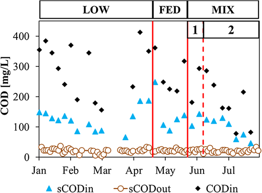 Profiles of COD and sCOD in the influent and effluent wastewater.