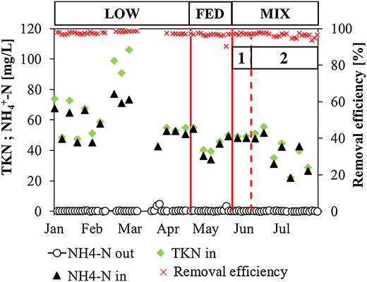Profiles of TKN and NH4+-N in the influent and effluent wastewater, and removal efficiency of TKN.