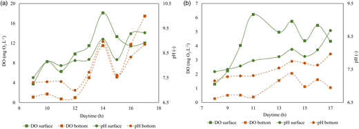 Diurnal variations of DO and pH between two depths of FPs (a) and MPs (b).
