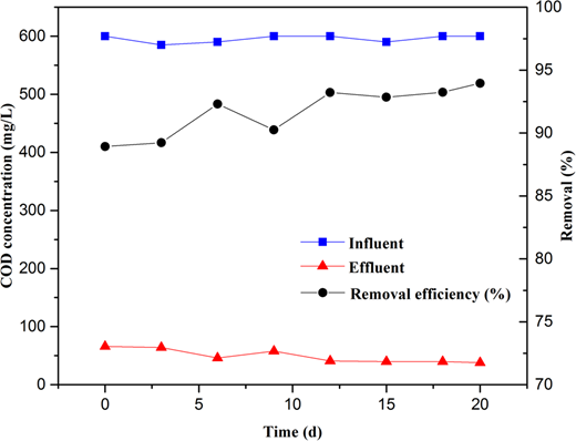 Changes of influent and effluent COD concentration and COD removal.